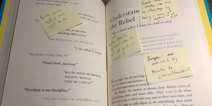 Notes in the book